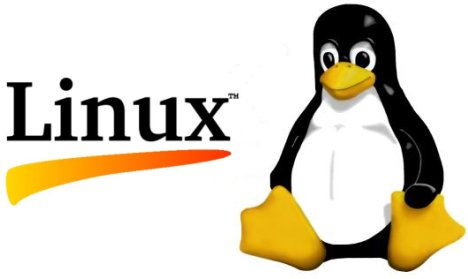 Linux is a free open source operating system for desktop, laptop and server computer types.